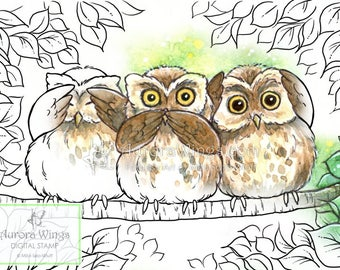Digital Stamp - Instant Download - Baby Owl Trio - digistamp - We Are No Evil - Animal Line Art for Cards & Crafts by Mitzi Sato-Wiuff