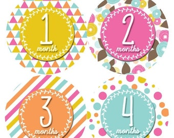 Monthly Baby Stickers Baby Month Stickers Baby Girl Month Stickers Monthly Photo Stickers Monthly Milestone Stickers 397