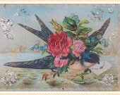 Vintage style bird swallow sparrow ornament, card, greeting, decoration, antique, postcard, victorian, paper #A-O-2
