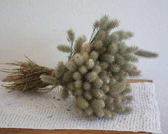 Bunch of wild dried flowers , dried grass, craft,