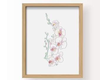 Janet's Orchid - Flowers Fine Art Illustration Print, Vintage Wall Art Print, Poster Illustration, Art for Home, Office