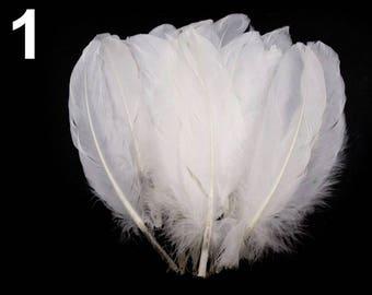 001 - Set of 5 16/21 cm white goose feathers