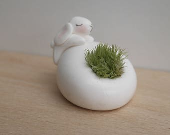 Mini decorative Pebble my Bunny collection zanimousse