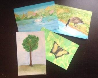 Nature Postcard Pack