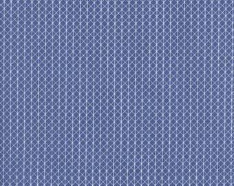Cotton Fabric - Cotton + Steel - Netorious in Velvet Sky from the Basics by Collection