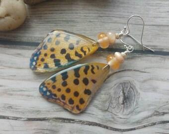 Queen of Spain Butterfly Earrings. Butterfly wings Earrings. Insect Jewellery. Sterling silver. UK artist. Lampwork. Unique jewellery
