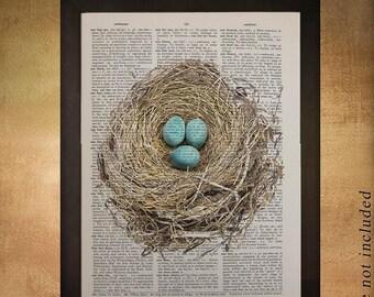SALE-SHIPS Aug 22- Robin's Nest Eggs Dictionary Art Print Bird Spring Wall Art Home Decor Animal Fine Art Print upcycled book da457