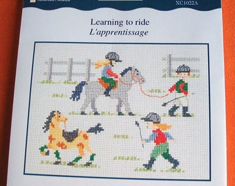 Kit DMC counted cross stitch learning