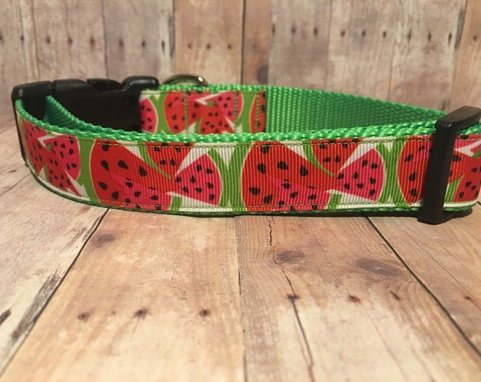 "The Watermelon | Designer 1"" Width Dog Collar 