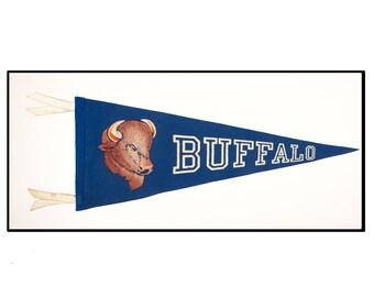 University at Buffalo Circa 1960s