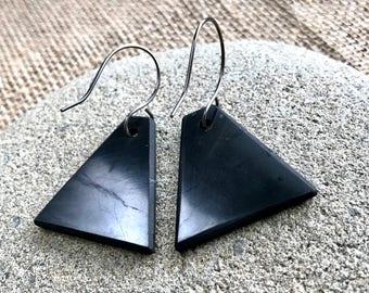EMF Earrings w/Shungite Triangles