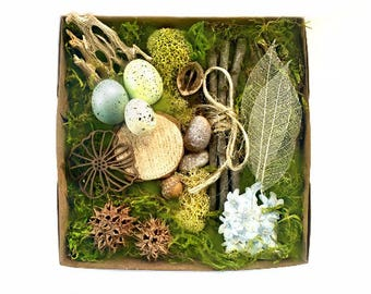 Fairy House Kit