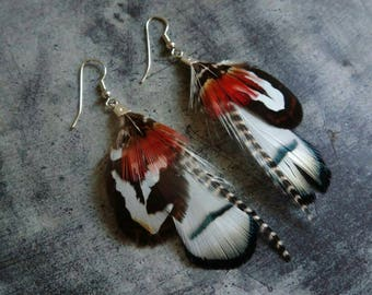Little pair of feather earrings.