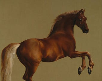 Whistlejacket  by George Stubbs - Poster A3 or A4 Matt, Glossy or Art Canvas Paper