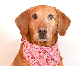 "Dog Bandana - ""Pink Valentine Hearts"" Reversible, Tie-On Pet Bandana"