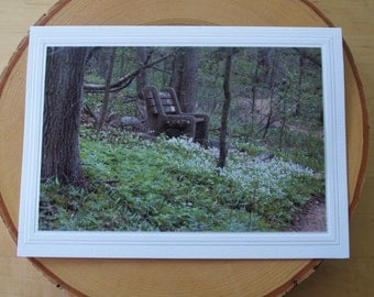 Photo Greeting Card | Photography Card Photo Note Card | Nature | Encouragement | Sympathy | Springtime | Contemplation | Reflection