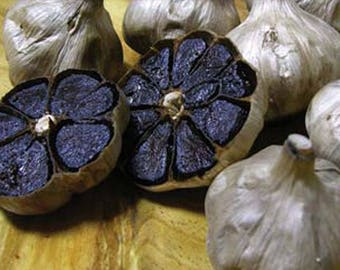 Black garlic-black garlic, 20 seeds/seeds