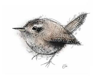 Jenny Wren mounted print // wren print // wren gifts // bird gifts // bird print // bird lover // bird watcher gifts // British bird print
