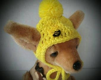 Small Dog hat, Chihuahua hat, Dog hat, Yorkie hat