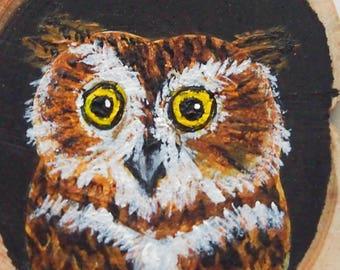 Owl, Unique hand painted art pendant.