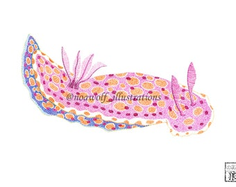 Nudibranch drawing - Sea slug drawing - Nudibranch painting - Sea slug painting - Nudibranch art - Sea slug art - Nudibranch print