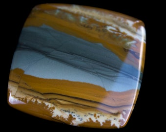 Owyhee Canyon Picture Jasper, Picture Jasper Cabochon, Gary Wilson, One of a Kind, Designer Cabochon