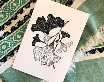 Gingko Tree Leaves - Botanical Style Illustration - Black & White - Print