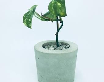 Concrete planters, Flower/Plant Pots, Indoor Plant Pot, Home Decor, Gift