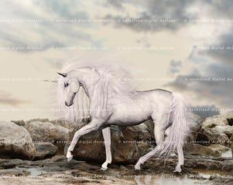 Unicorn Digital Backdrop / Background / Instant Download