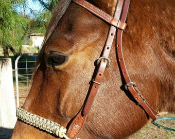 Evolve Black Bitless Noseband - 2 sizes available