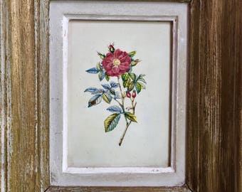 Oil Painting of a Red Tea Rose