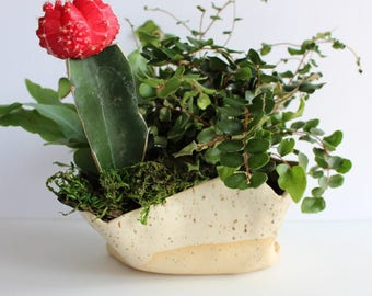 Elephant Planter For Succulents Ceramic Planters Mothers Day