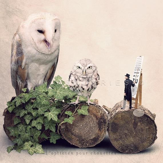 Owl optician photography print, optician decor or gift, Tiny trades, Fun bird photography, Owls photo print, Animal photography