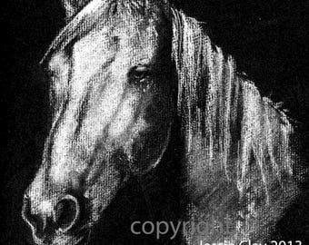 Night Horse - Walking in Moonlight