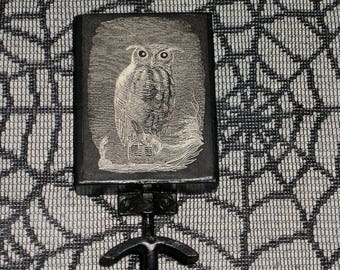 "Owl Print Wall Hook~Label~Wood & Wrought Iron~Gothic~Creepy~Halloween~Black~6"" High"