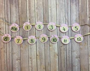 Newborn - 12 Month Glitter Pumpkin Photo Banner