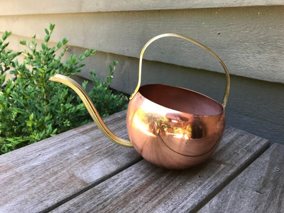 Vintage Copper Watering Can House Plants Succulents Small