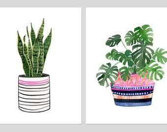 "Two Print Set: ""Sansevieria"" & ""Monstera Deliciosa"" Archival Prints by Lindsay Gardner"