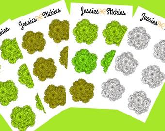 Succulent Stickers Cactus Stickers