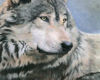 Friduwulf (peaceful wolf)