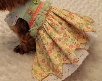 Pretty green, orange and yellow small dog dress