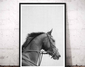 Horse Print, Horse Photo, Horse Photography, Horse Art, Black Horse, Instant Download, Horse Printable Art, Black And White Prints