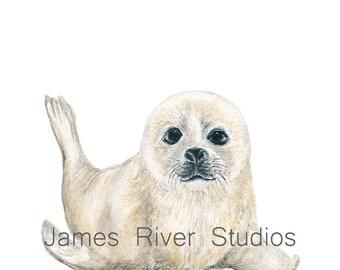 Seal Art Seal Painting Seal Print Seal Wall Art Seal Wall Decor Seal Decor Baby Seal Nursery White Seal Pup Arctic Watercolor Neutral Art