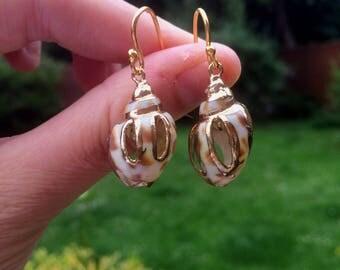 24K Gold Vermeil Sea Shell earrings
