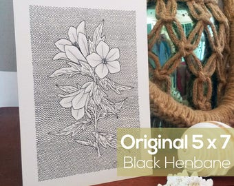 "Original Ink Artwork - Black Henbane 5"" x 7"""