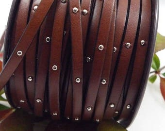 cord flat leather with studs Brown 5mm by 20cm