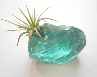 Air Plant Emerald Green Glass Rock Terrarium-Housewarming Gift-Air Plant Decor-Beach Wedding Decor-Cute Gifts-Birthday Gift-Air Plant Holder