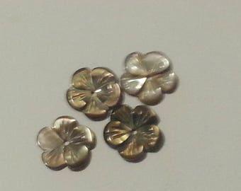 coffee flower shaped shell beads