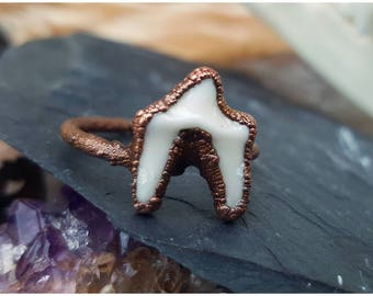 Real tooth ring ~ Electroformed coyote teeth in copper, size 6, 7, 8, 10, 11