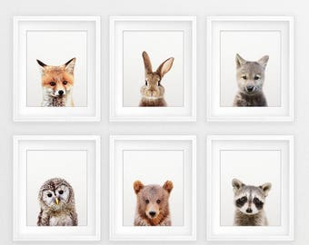 Woodland Nursery Decor, Baby Animals Set 6, Bunny Fox Bear Owl Wolf, Nursery Prints Modern Animal Art, Woodland Animals, Kids Room Printable